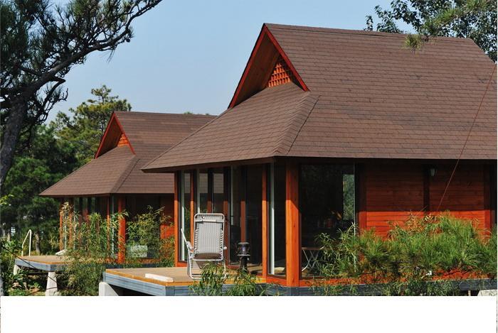别墅屋顶工地图片